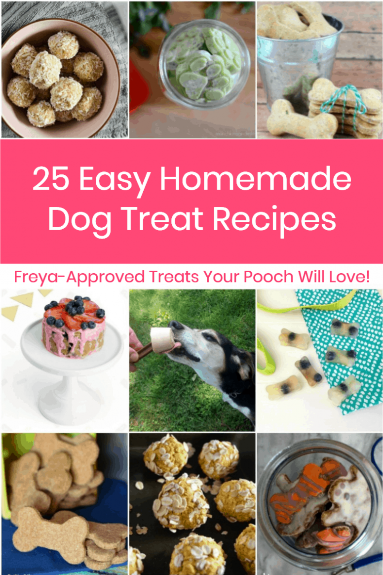 10 Easy Homemade Dog Treats Recipes Your Pooch Will Devour