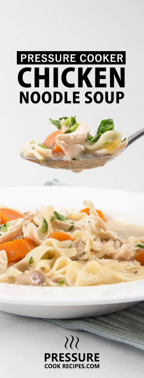 17 Best images about Best Pressure Cooker Recipes on ...