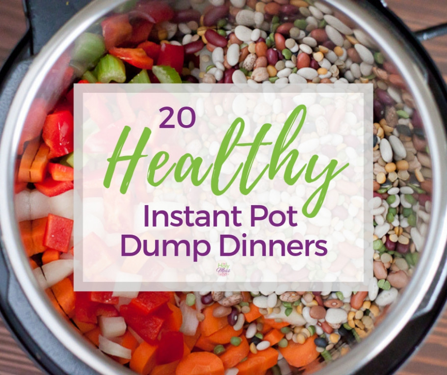 20 Healthy Instant Pot Dump Dinner Recipes The Holy Mess