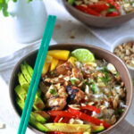 Asian Chicken And Toasted Coconut Rice Bowls – The Noshery