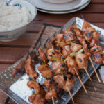 Asian Chicken Kebabs Recipe — Dishmaps