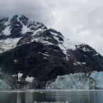 At Glacier Bay, Witness A National Park Emerge From An Ice …