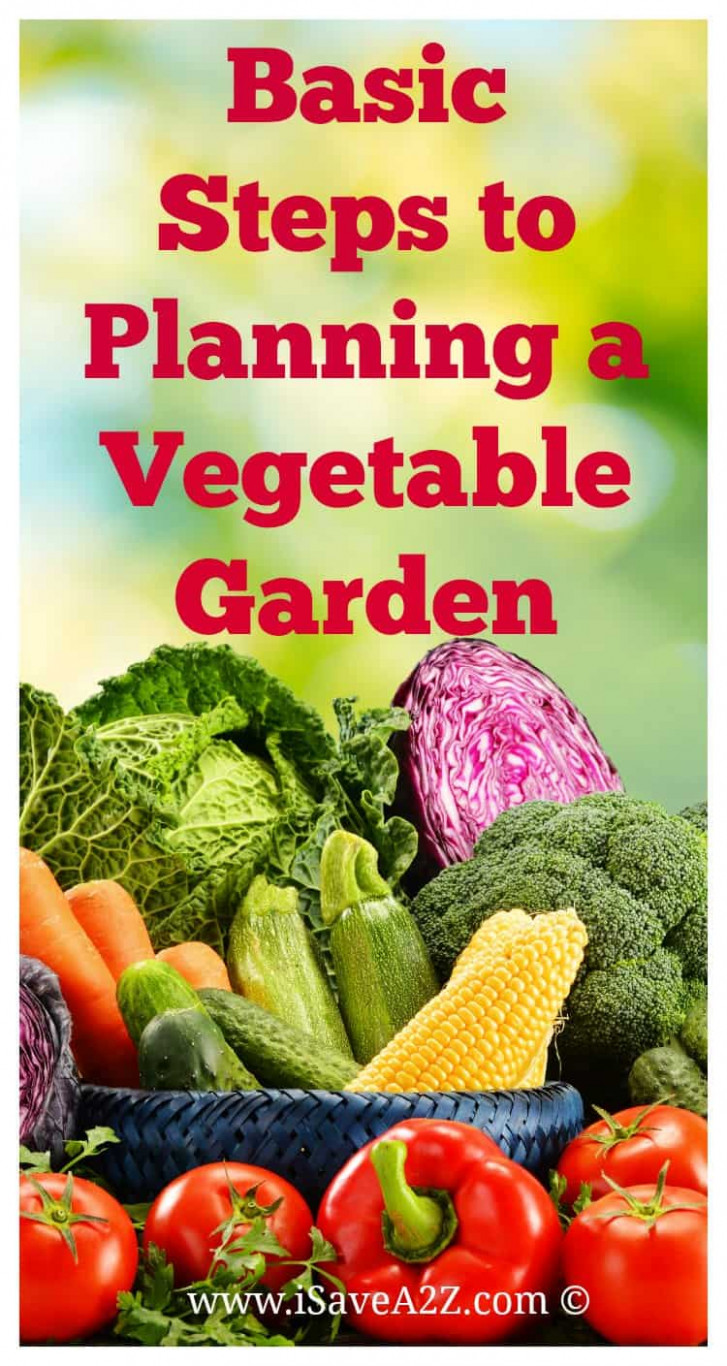 Basic Steps to Planning a Vegetable Garden - iSaveA2Z