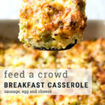 Best Sausage And Egg Breakfast Casserole (make Ahead Recipe …