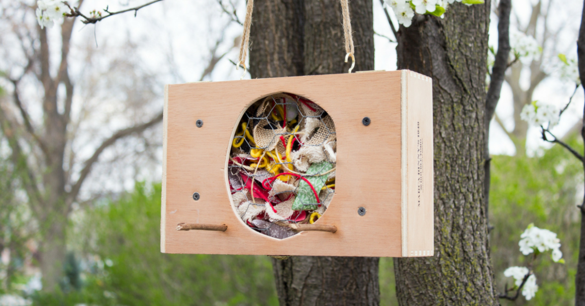 DIY Bird Nesting Material Holder From A Cigar Box