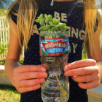 Earth Day Activities For Kids · The Typical Mom