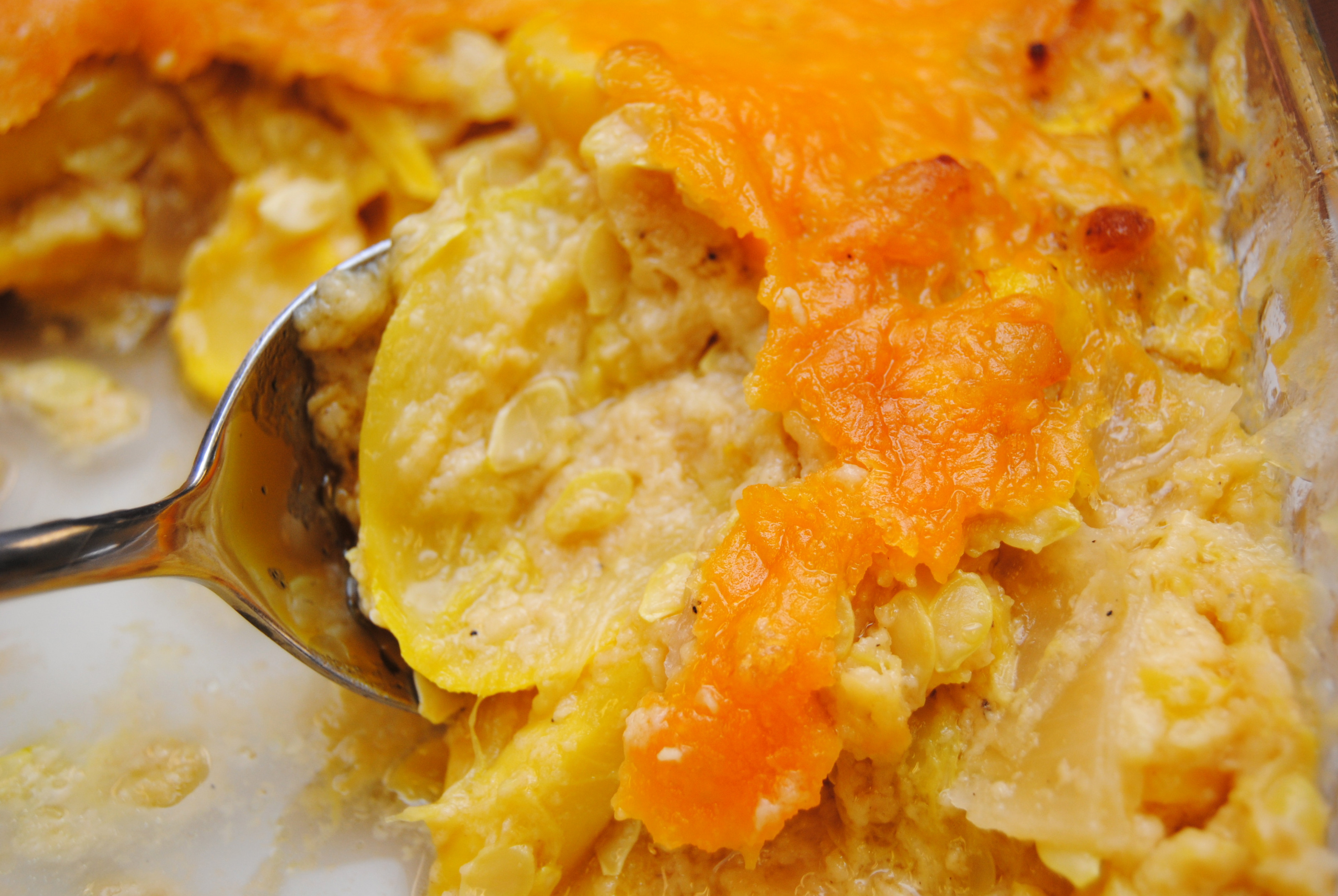 squash-recipes-casserole