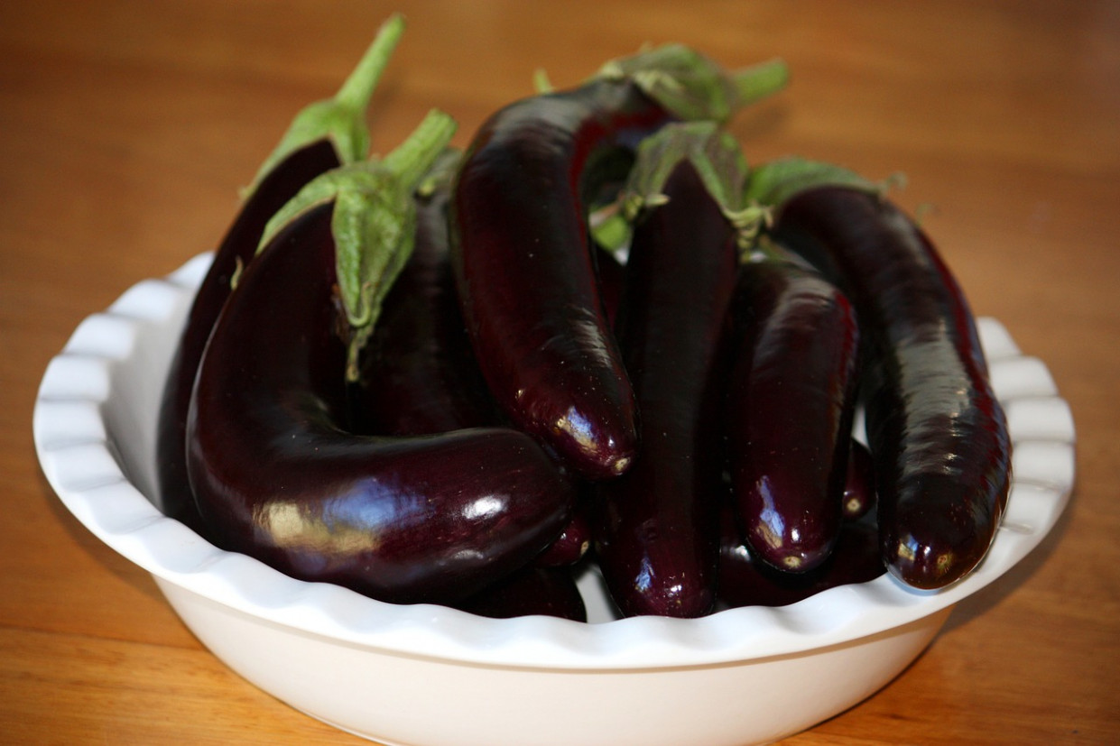 Eggplant, Aubergine, Vegetable, Food