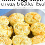 Extremely Simple And Delicious Healthy Mini Egg Cups! A …