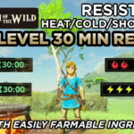 Fire Resistance Potion Recipe Zelda | Sante Blog
