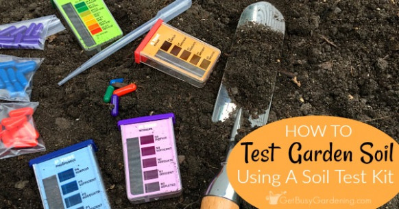 Garden Soil Testing: How To Test Your Soil At Home Using A ...