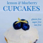 Healthy Low Carb Blueberry Cupcakes