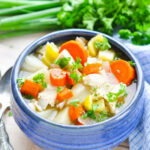 Healthy Slow Cooker Chicken Stew – The Seasoned Mom