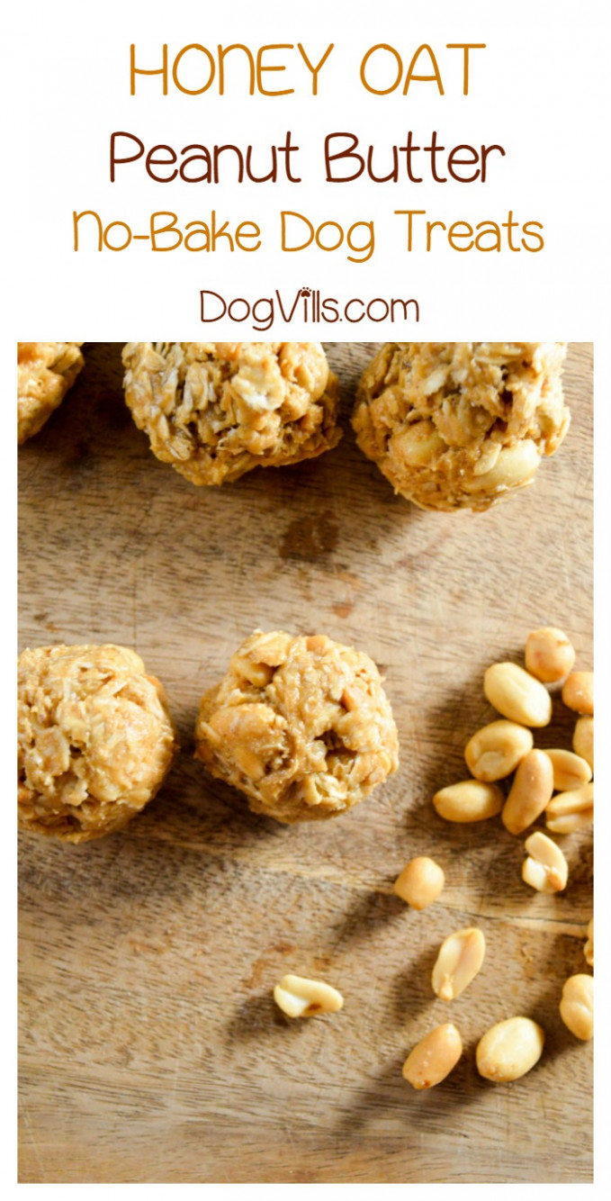 Hypoallergenic Dog Treat: Honey Oat Peanut Butter Balls