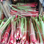 In Season: Rhubarb. Recipes, Cooking Tips, And Health …