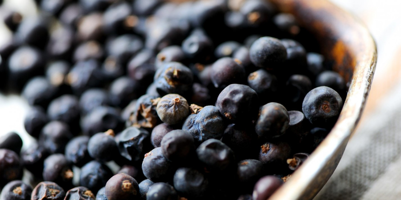 Juniper Berry Recipes: Mulled Wine, Sauces, Jams - Great ...