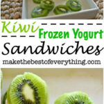 Kiwi Frozen Yogurt Sandwiches | HEALTHY MEAL & SNACKS FOR …