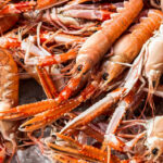 Langoustine Recipes – Great Italian Chefs