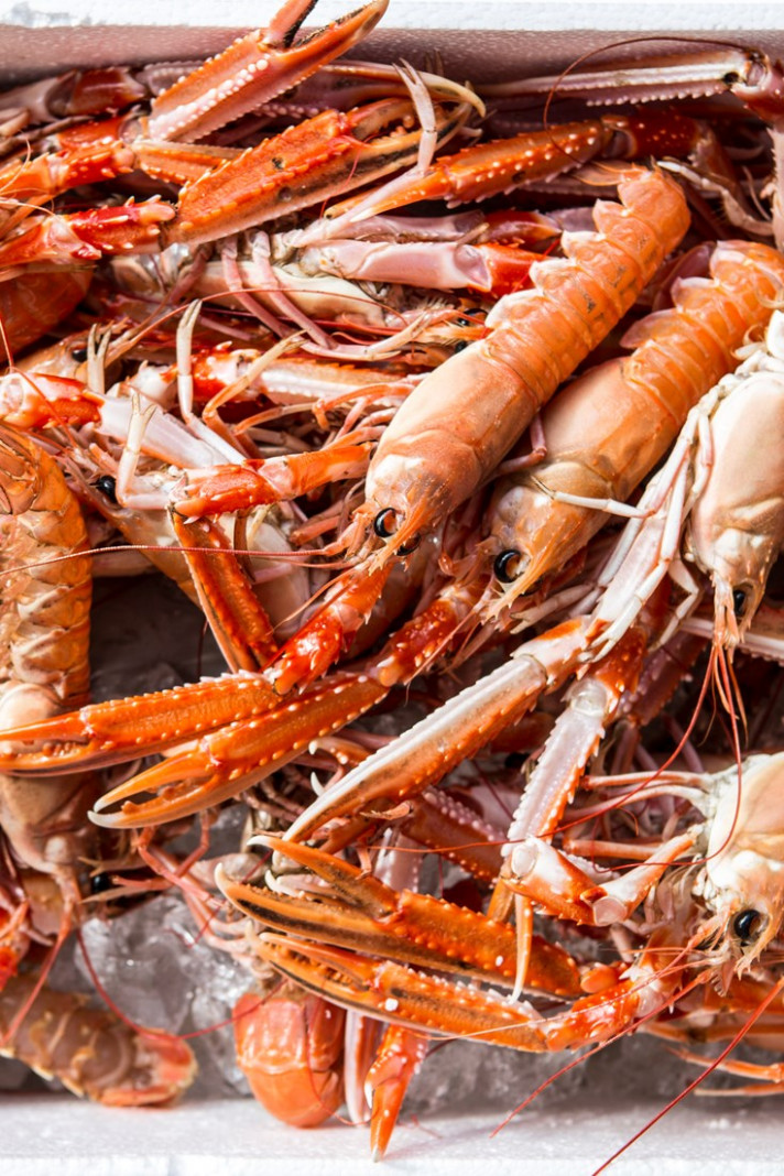 Langoustine Recipes - Great Italian Chefs
