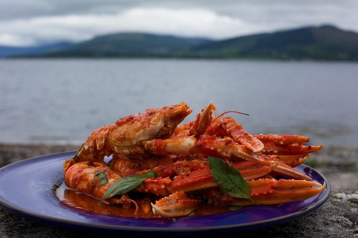 Langoustine with tomato sauce | Crafish recipes | SBS Food
