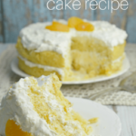 Orange Delight Cake Recipe – Cleverly Simple