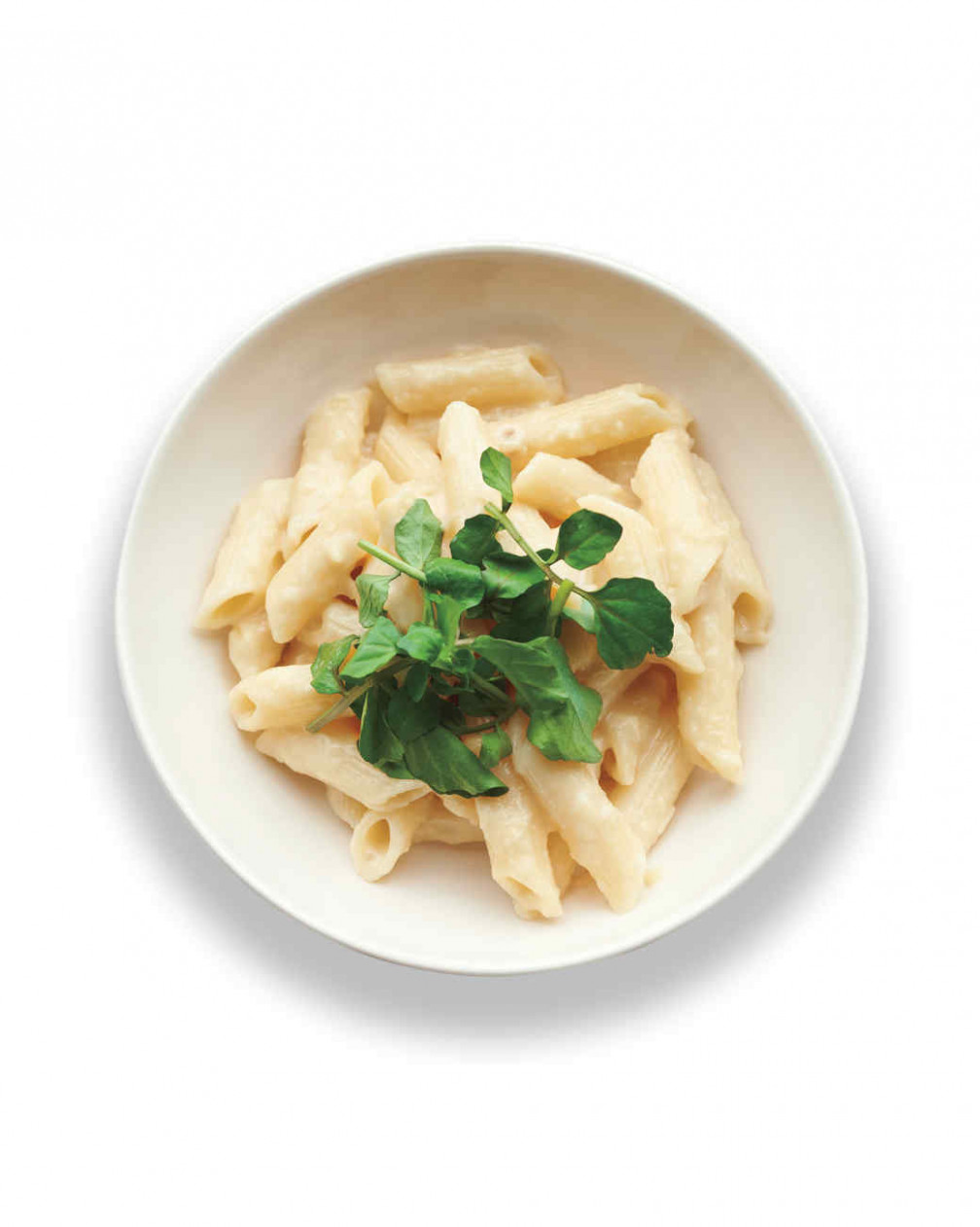 Penne Pasta Recipes | Martha Stewart