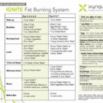 Pin By Janet Oden On Xygunlar Menu | Xyngular 8 Day …
