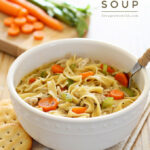 Quick And Easy Chicken Noodle Soup – Love Grows Wild