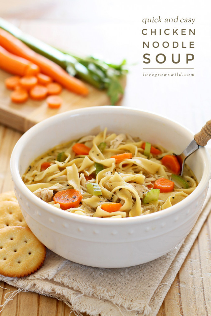 Quick and Easy Chicken Noodle Soup - Love Grows Wild