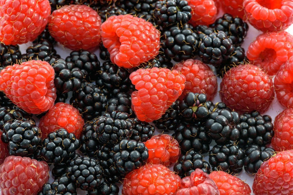 Raspberries, Fruits Of The Forest
