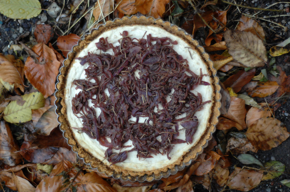 roasted garlic cheesecake with caramelised onions
