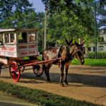 Roman Candy Wagon, New Orleans