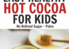 The Healthy Easy Hot Cocoa Recipe for Kids   Living Well Mom