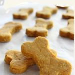 Turmeric Dog Biscuit Recipe | Lola The Pitty