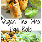 Vegan Tex Mex Egg Rolls